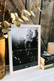 New beginnings photographic print – Classiq Journal Editions